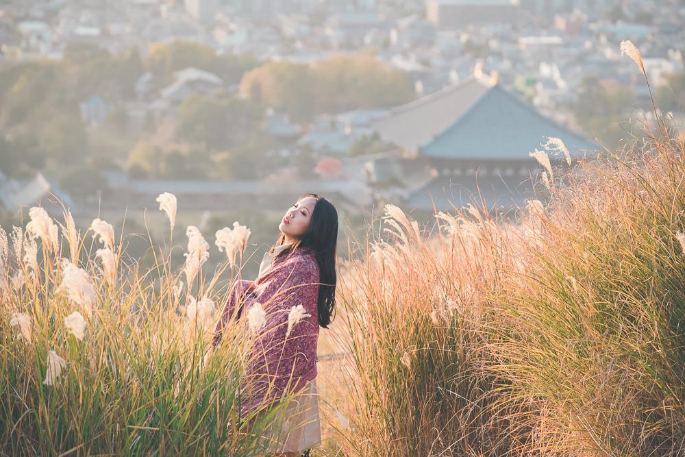 奈良若草山