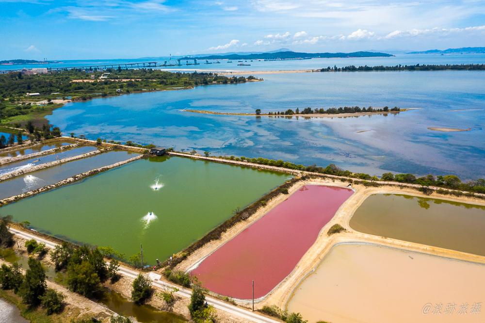 金門粉紅湖