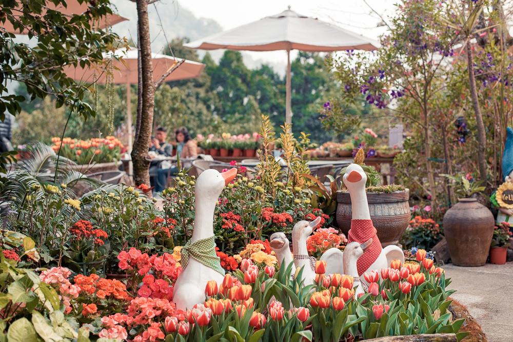 碧絡角花園咖啡