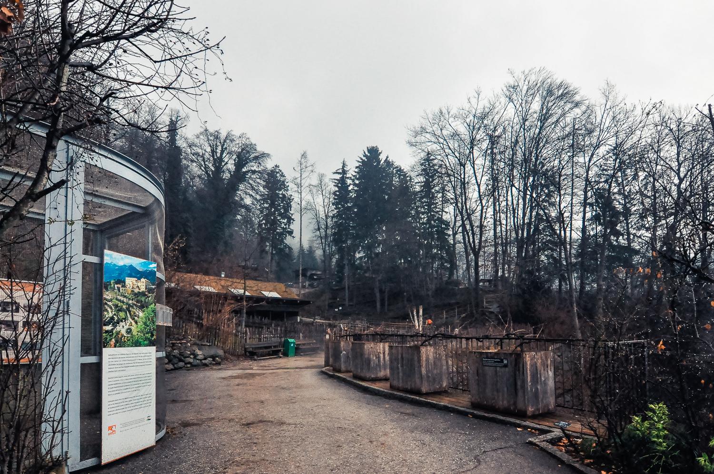 阿爾卑斯動物園 Alpenzoo